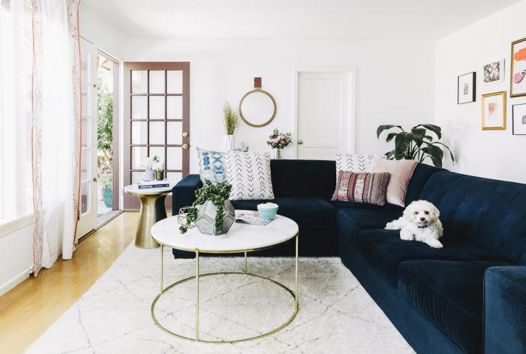 bold sofas