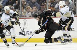 Penguins Ducks Hockey