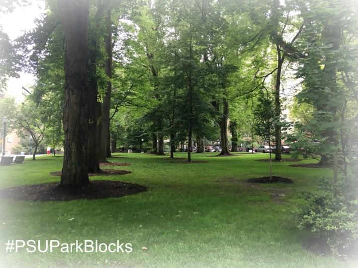 PSU Park Blocks