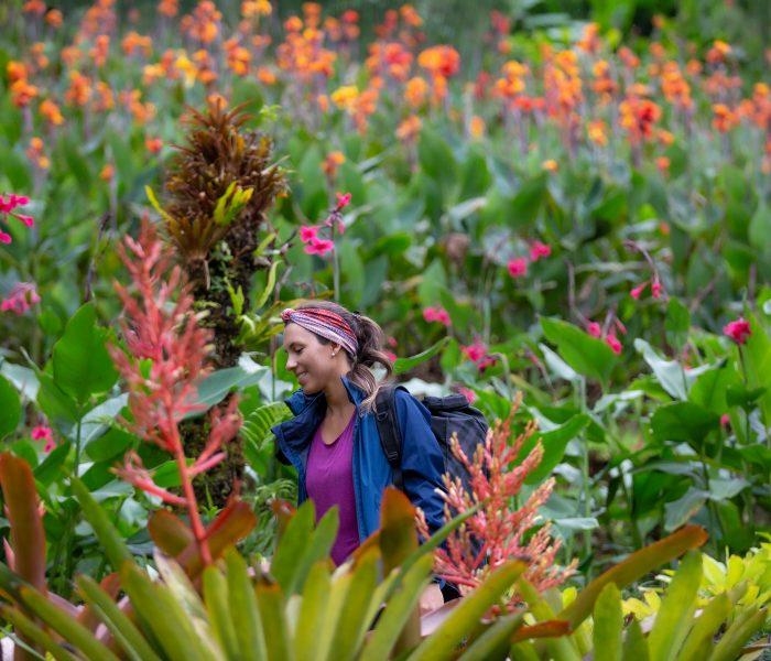 Capturing Pura Vida in Costa Rica