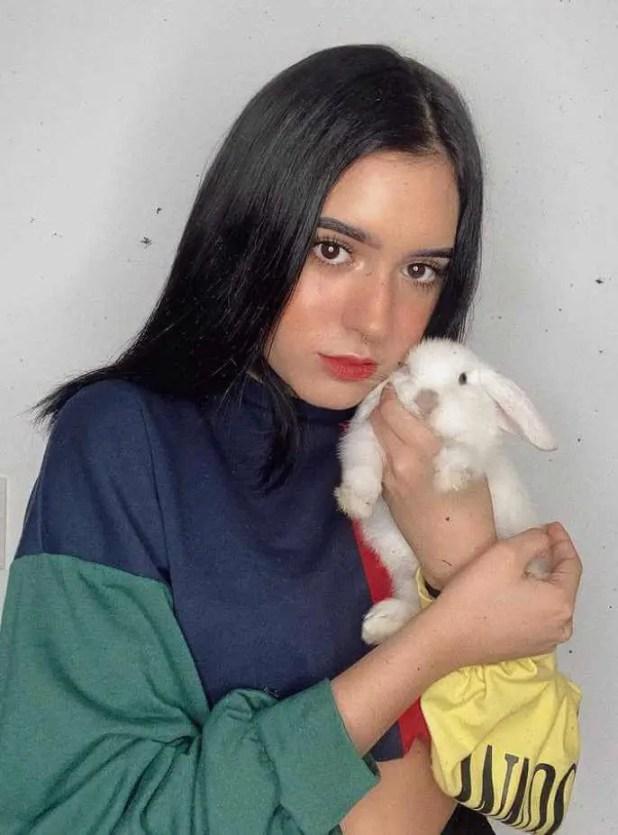 Domelipa with Rabbit Image