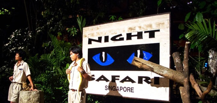singapore-night-safari-main