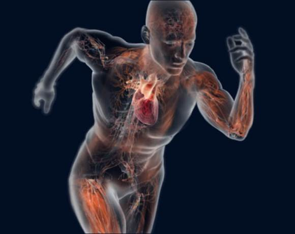 WEBINAR SERIES – Advancements in Exercise Physiology, Sports Science and Biomechanics