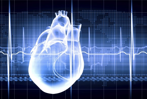 Improving Preclinical and Clinical Regulatory Submissions Through Enhanced ECG Interval and Arrhythmia Assessment