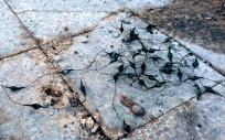 Improvised explosive device camouflaged as prayer beads