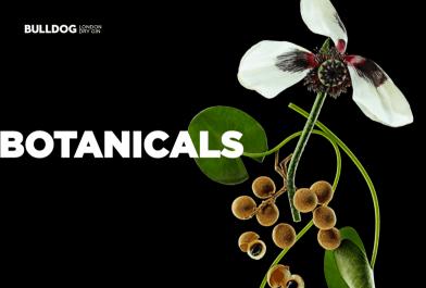 bulldog-gin-botanicals