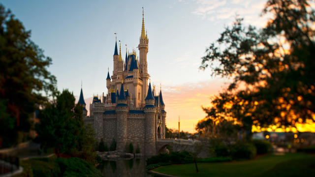 magic kingdom tour
