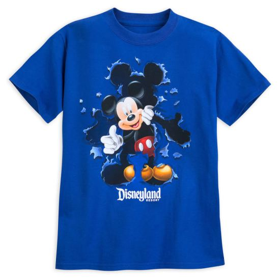 Disneyland Resort tops