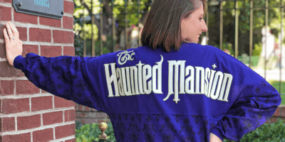 Disney attraction spirit jerseys