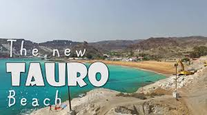 new tauro beach
