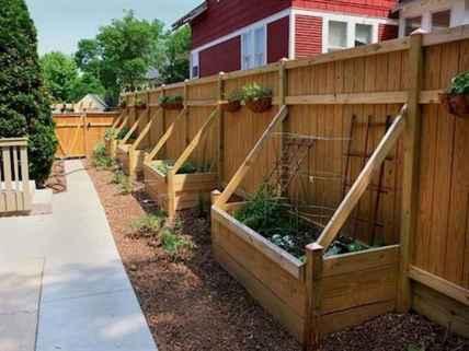 31 DIY Backyard Privacy Fence Design Ideas on A Budget