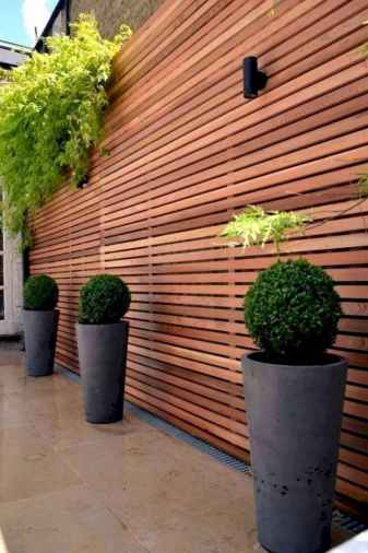 56 DIY Backyard Privacy Fence Design Ideas on A Budget