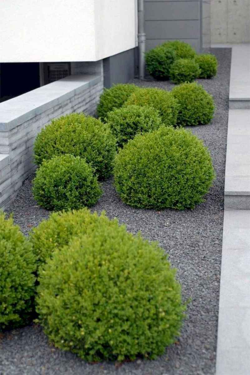 12 Low Maintenance Front Yard Landscaping Ideas