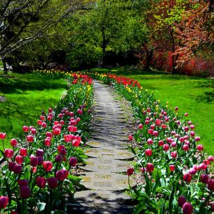 23 Fabulous Garden Path and Walkway for Front and Backyard Ideas