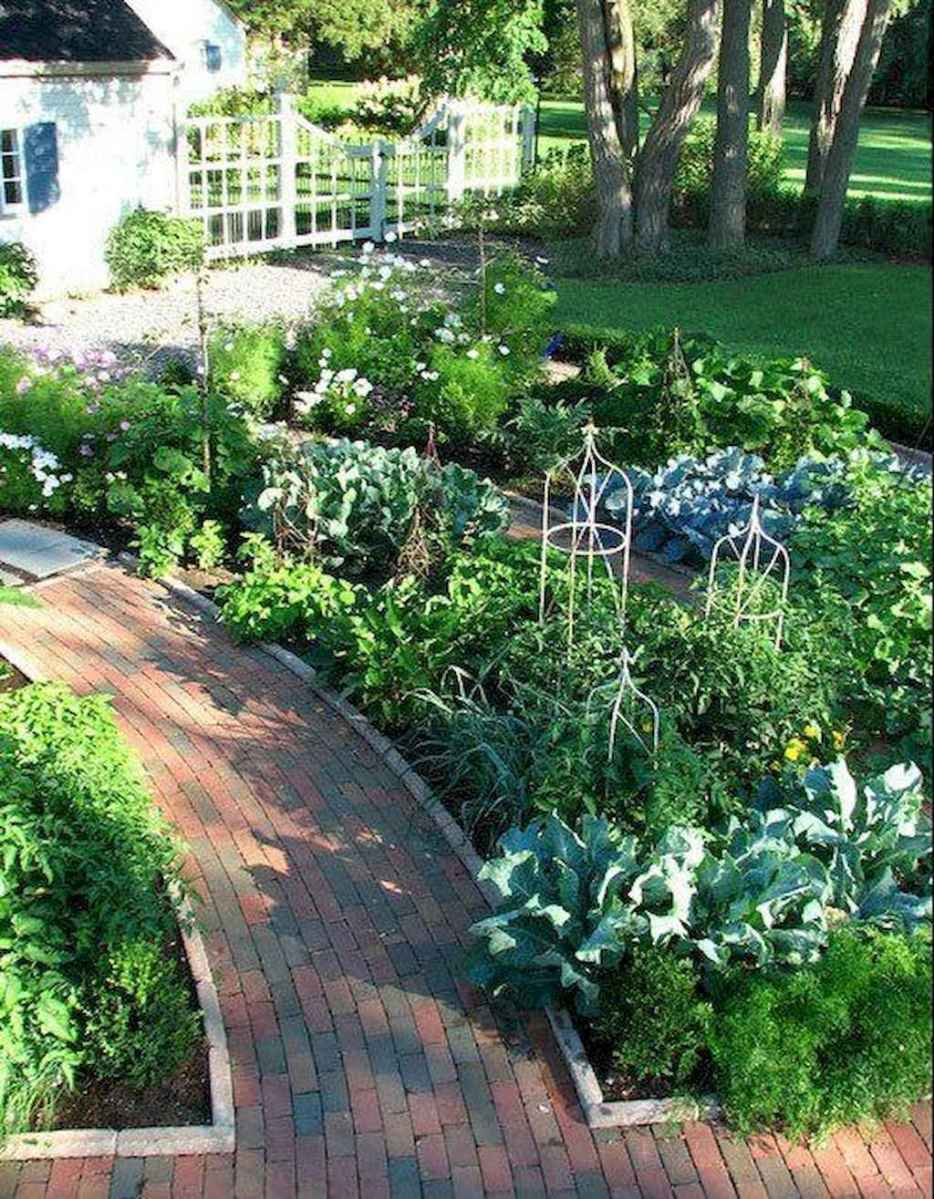 54 Low Maintenance Front Yard Landscaping Ideas