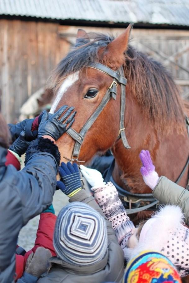 vaikai glosto arkli