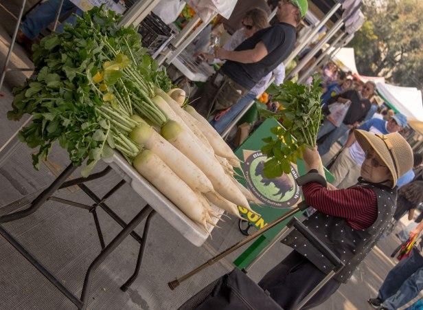 horseradish-old-lady-market-20140215_2746