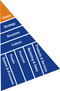 Insight Advisory Group - Strategic Planning ROCKET - Consulting