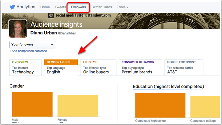 Twitter Author Insights