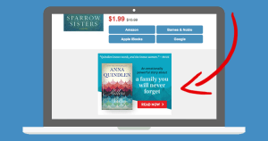 BookBub Ads - Promote Any Book, Any Time