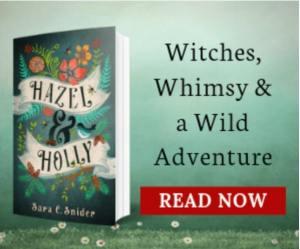 BookBub Ads Design Inspiration Hazel and Holly
