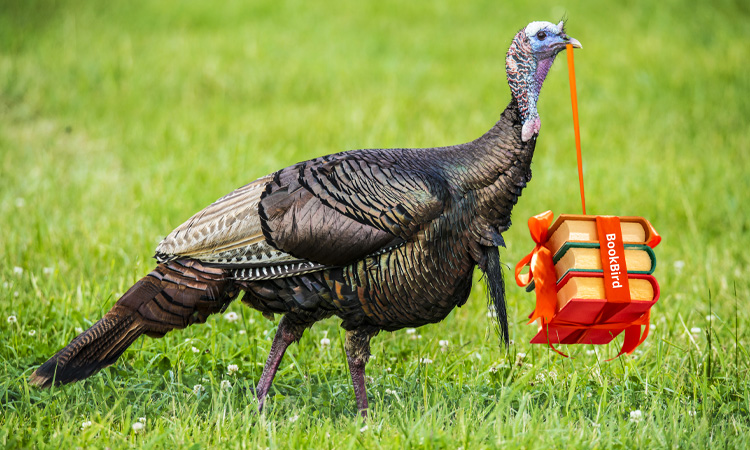 BookBird Turkey