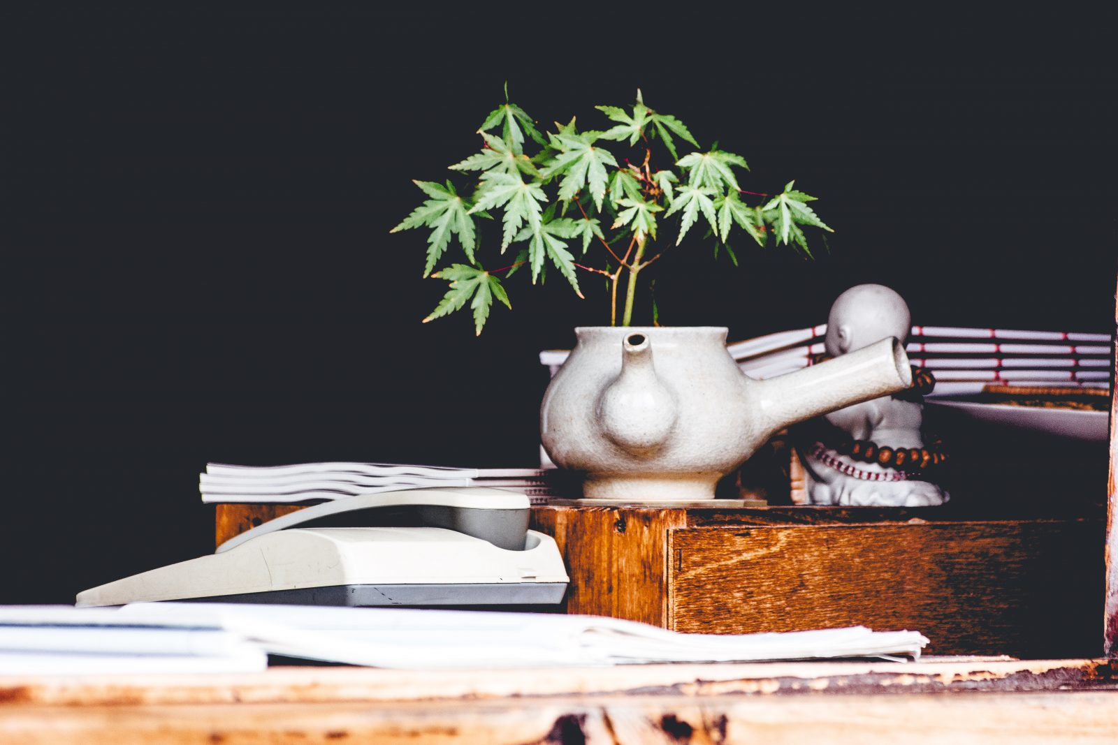 Stirring the Pot: The Current Status of Marijuana Legalization in the United States