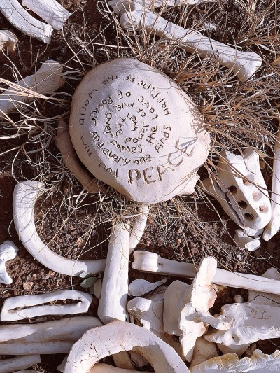 One Million Bones art project sculptures of a skull and bones in a field near Silver City, New Mexico