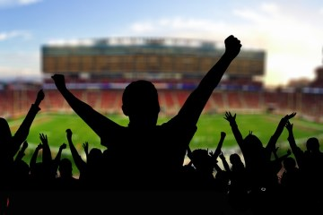 People cheering at a game