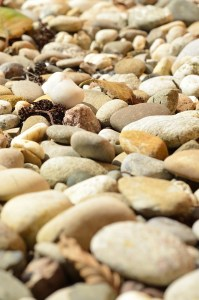 close-up photo of stones