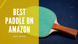 Read more about the article Best Ping Pong Paddles On Amazon: Make the right choice