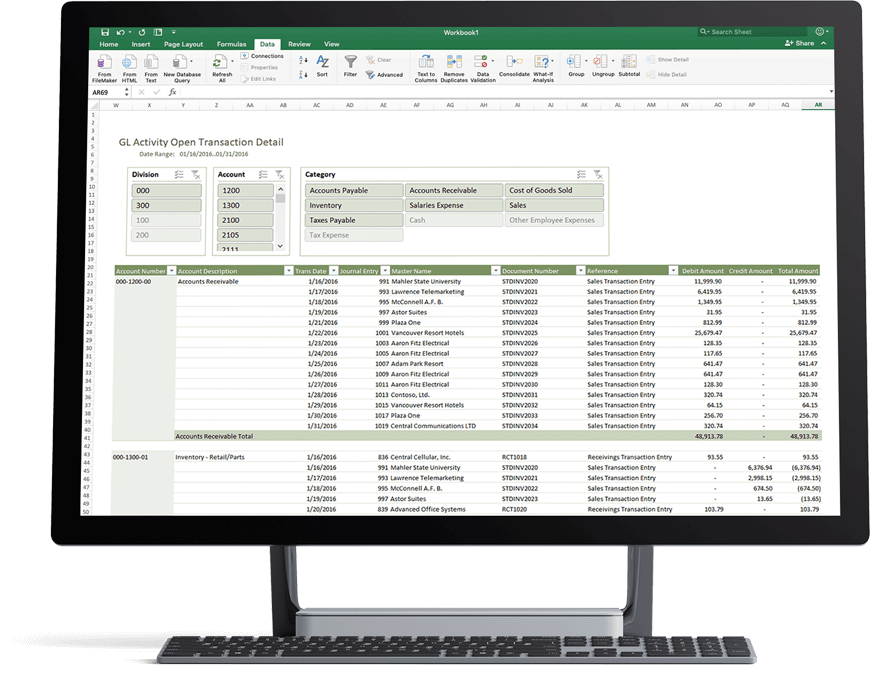Financial Report Software for Excel