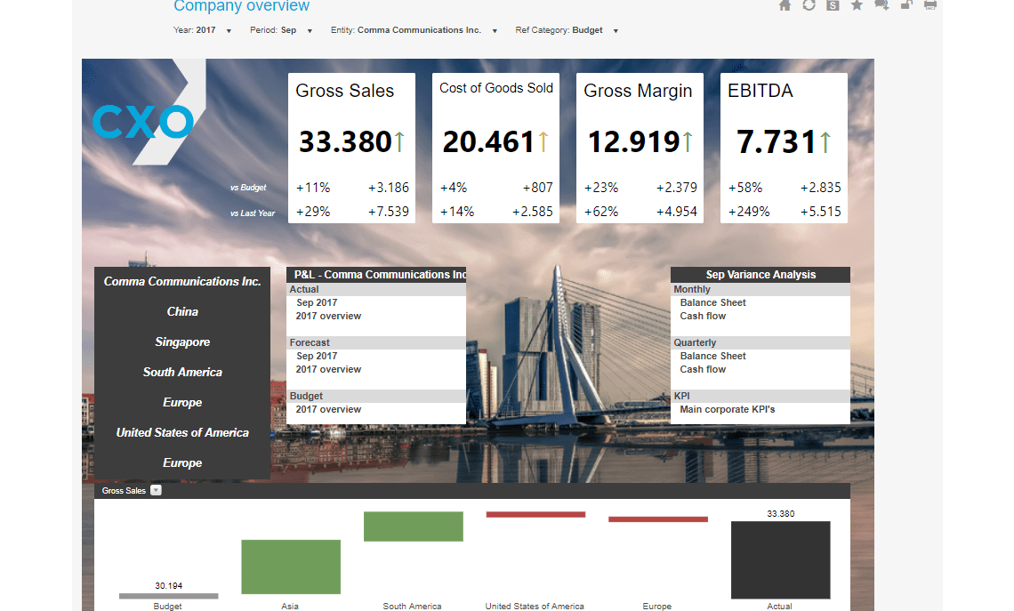 Company Overview Example Dashboard