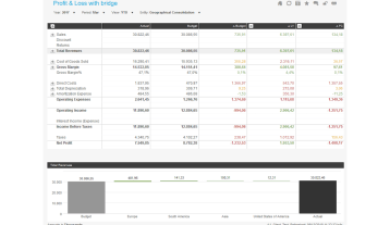 Profit And Loss With Bridge Example Dashboard