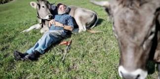 Quando pagano la disoccupazione Agricola 2019?