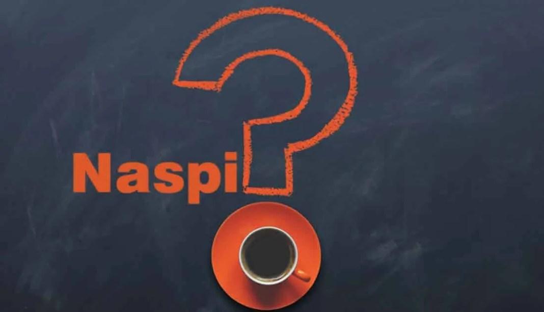 Che vuol dire Naspi? Cosa è la Naspi?