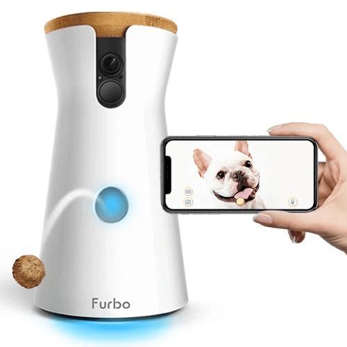 Uma câmera para cachorros Internet of Shit