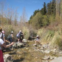 CampamentoPotrerillosPri2010 (4)