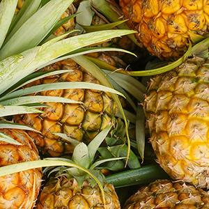 l\'Ananas