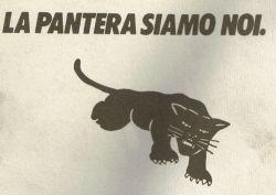 logo_pantera1