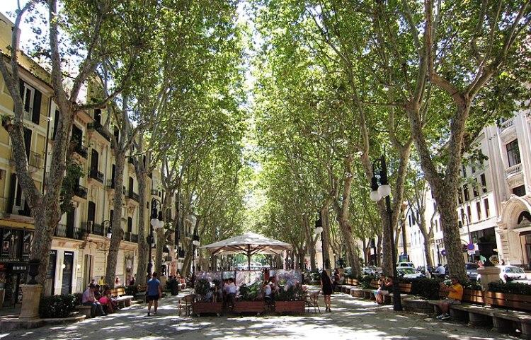 Passeig del Born, Palma de Mallorca