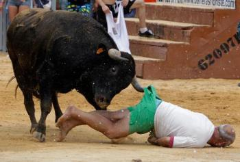 Afbeeldingsresultaat voor stierenvechten ongelukken