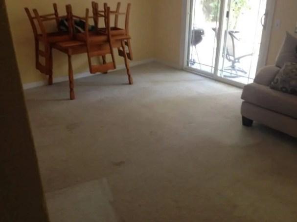 carpet cleaning fair oaks