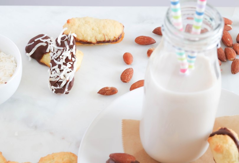 Low Carb Coconut Almond Cookie