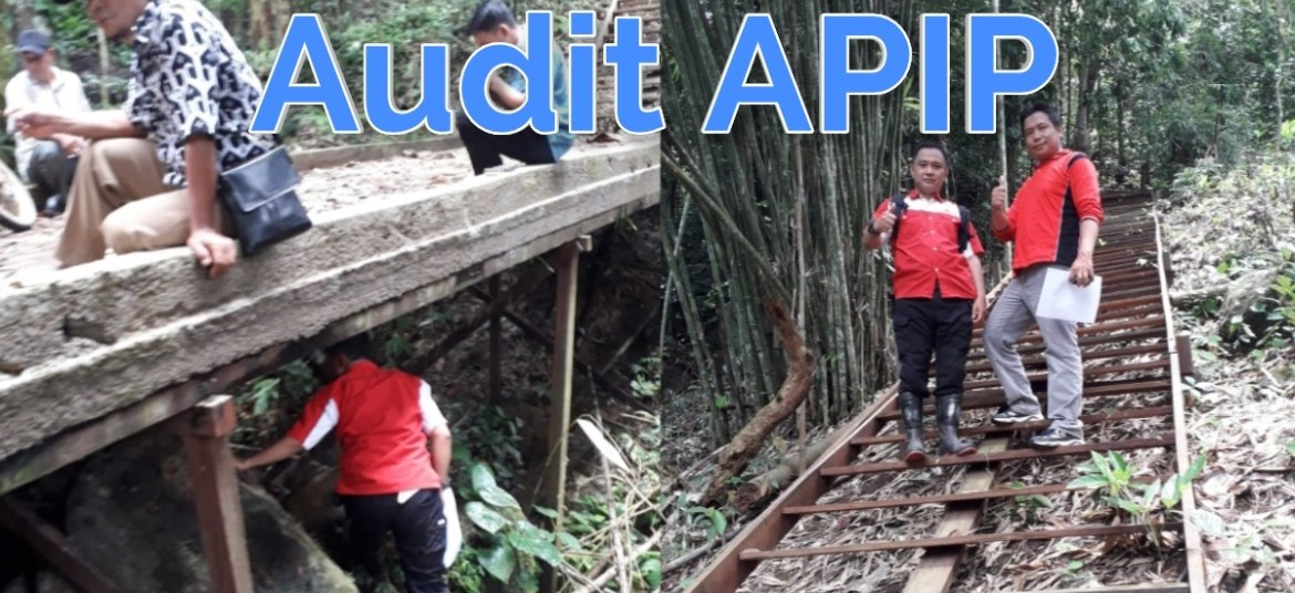 Audit Apip