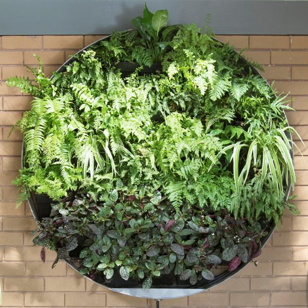 blind vertical garden design ideas