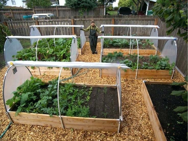 raised bed vegetable gardening and soil