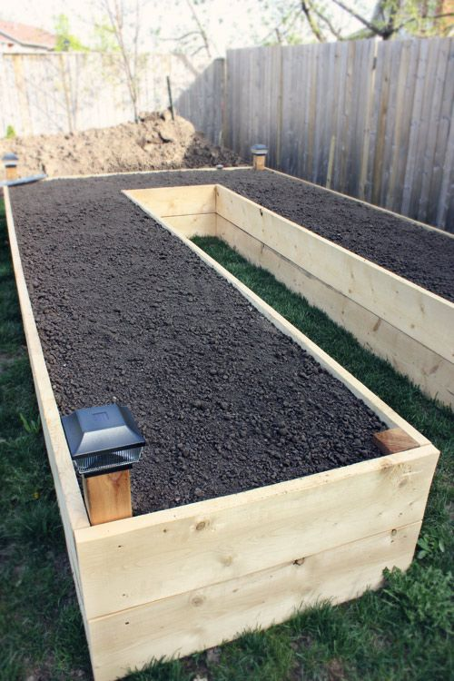 vegetable garden soil bed garden boxed