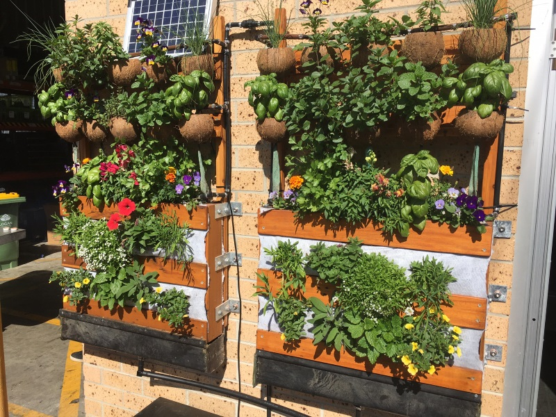 vertical garden wall idea