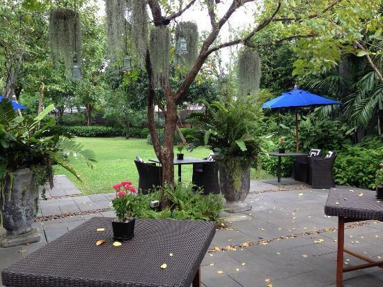 backyard recreational area